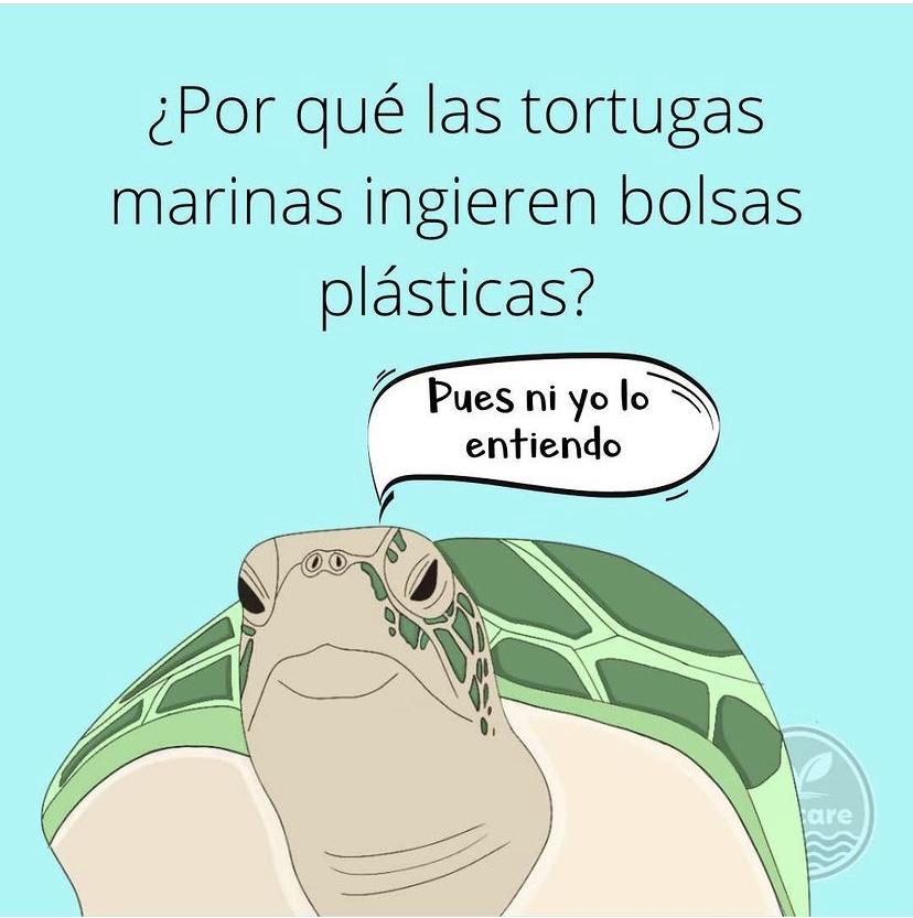bolsas-plásticas-tortugas