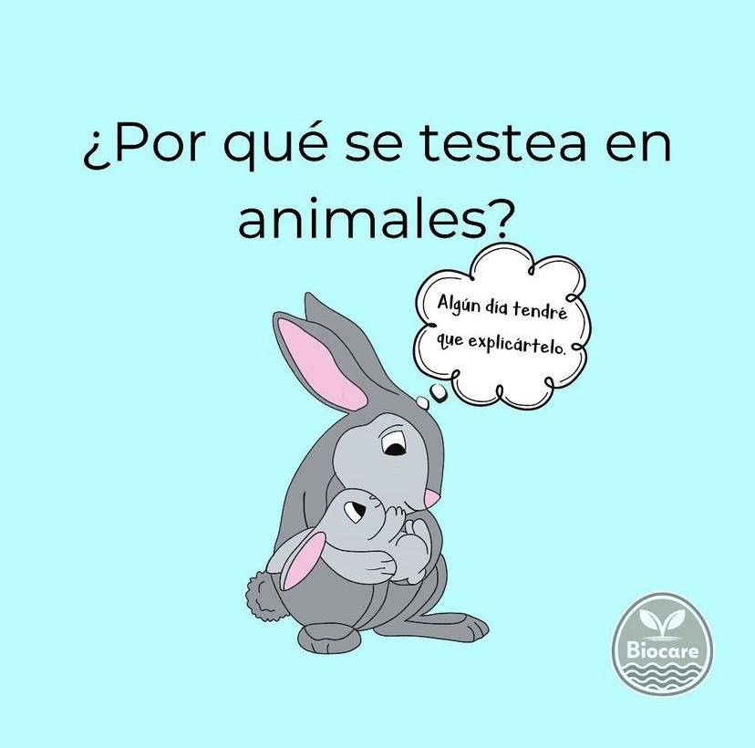por-que-se-testea-en-animales